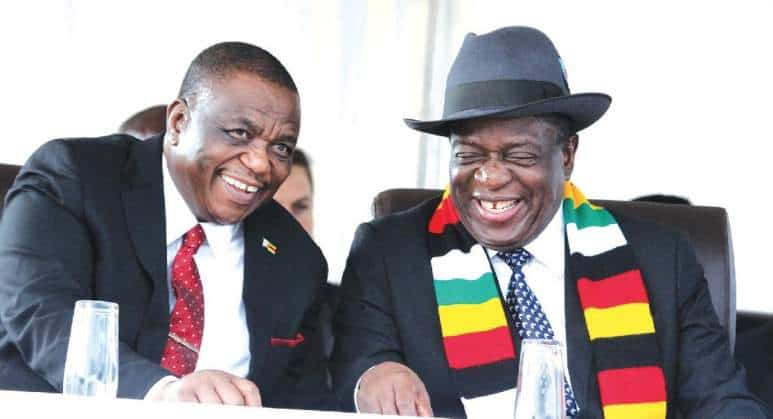 The appointment of Chiwenga as Minister of Health and Child Welfare – its nothing but a power consolidation game; the Public Administration view point