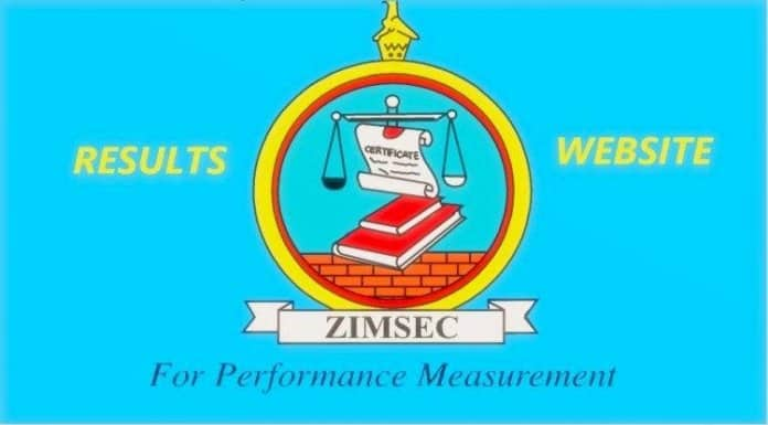 ZIMSEC 2020 GRADE 7 RESULTS ONLINE, How you can view Portal Website Link