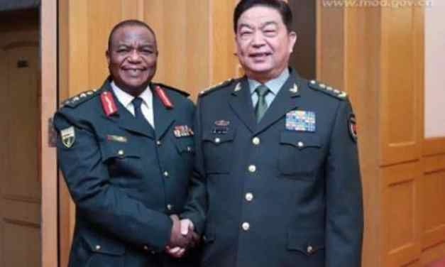 General Chiwenga foils ED Mnangagwa second term plot