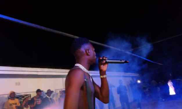 Show-goers revel as Gokwe Hotel opens