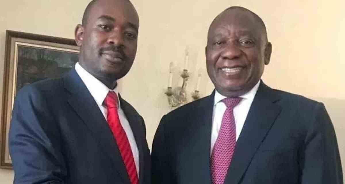 'Ramaphosa is funding Zim Opposition MDC Alliance,' CIO investigate alleged Chamisa-SA President link