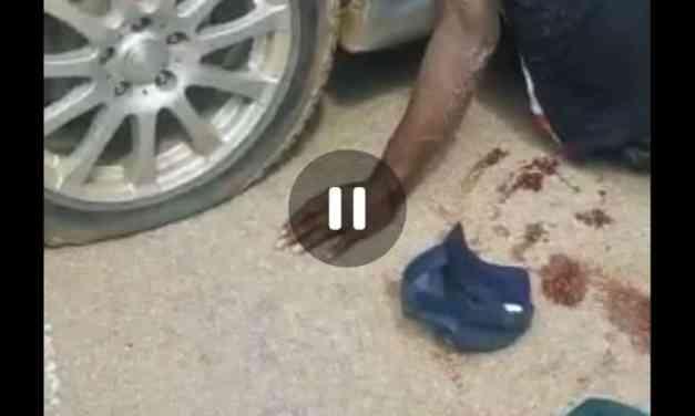 Suspected armed robber killed in Kwekwe police shootout? WATCH VIDEO