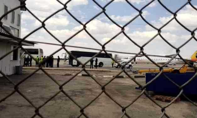 14 Zimbabweans deported from UK arrive, driven away