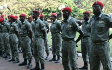 Youths groups petition Parliament to stop reintroduction of Green Bombers
