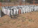 PICTURES: Forestry Commission Officers in Gokwe intercepts charcoal destined for Harare
