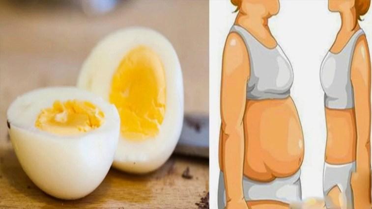 , رجيم البيض المسلوق لتخسيس 10 كيلو في أسبوعين فقط