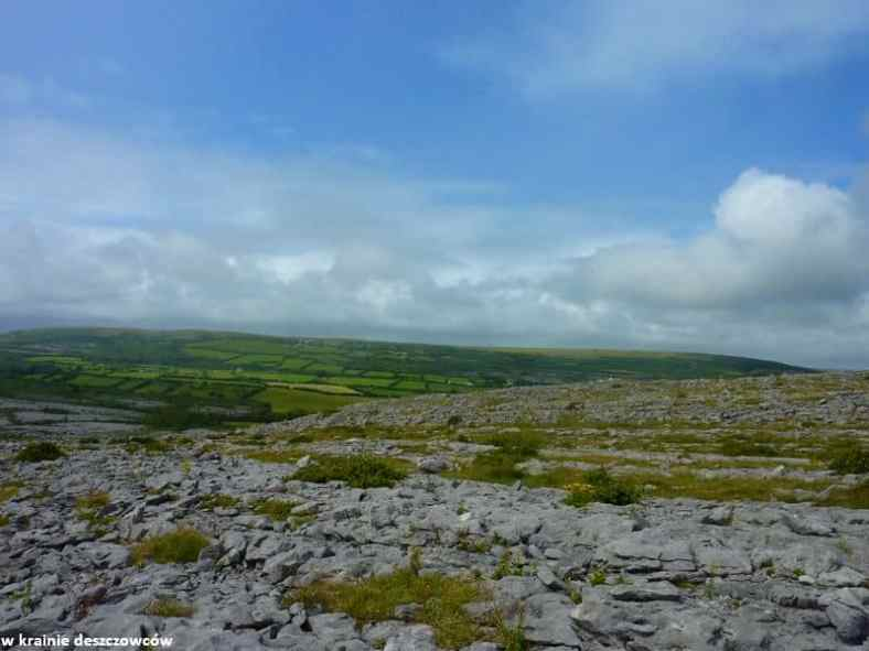 Mullaghmore Loop, Burren (14)