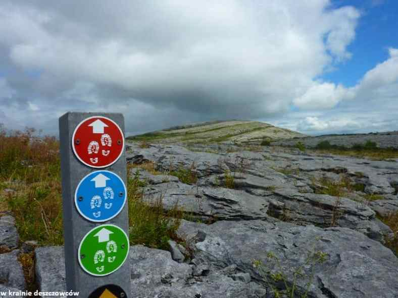 Mullaghmore Loop, Burren (6)