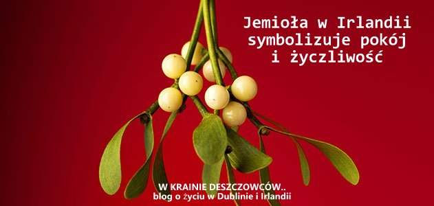 mistletoe-science-631-jpg__800x600_q85_crop