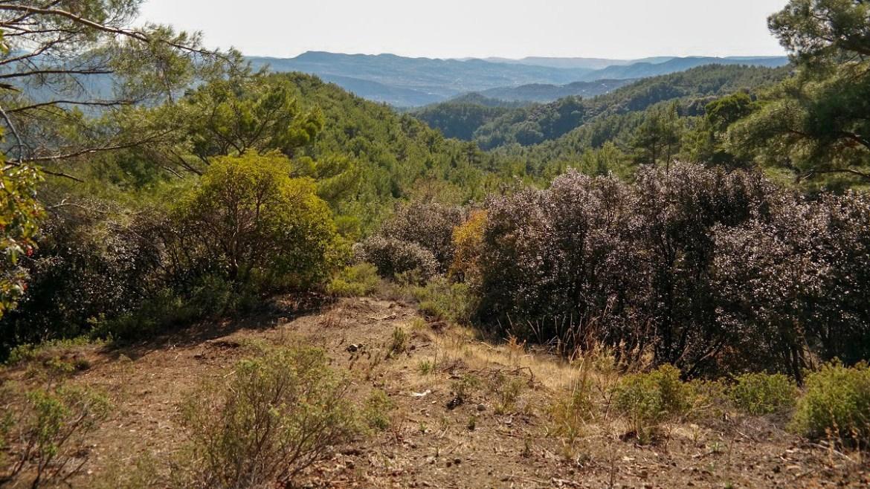 Góry Trodos Cypr Co zwiedzic i zobaczyć na cyprze zwiedzenie cypru