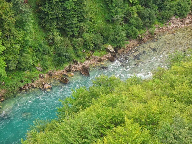 Rzeka Tara Wąwóz Tary Czarnogóra
