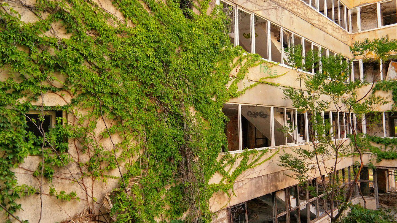 Kupari Zatoka Umarłych Hoteli Chorwacja