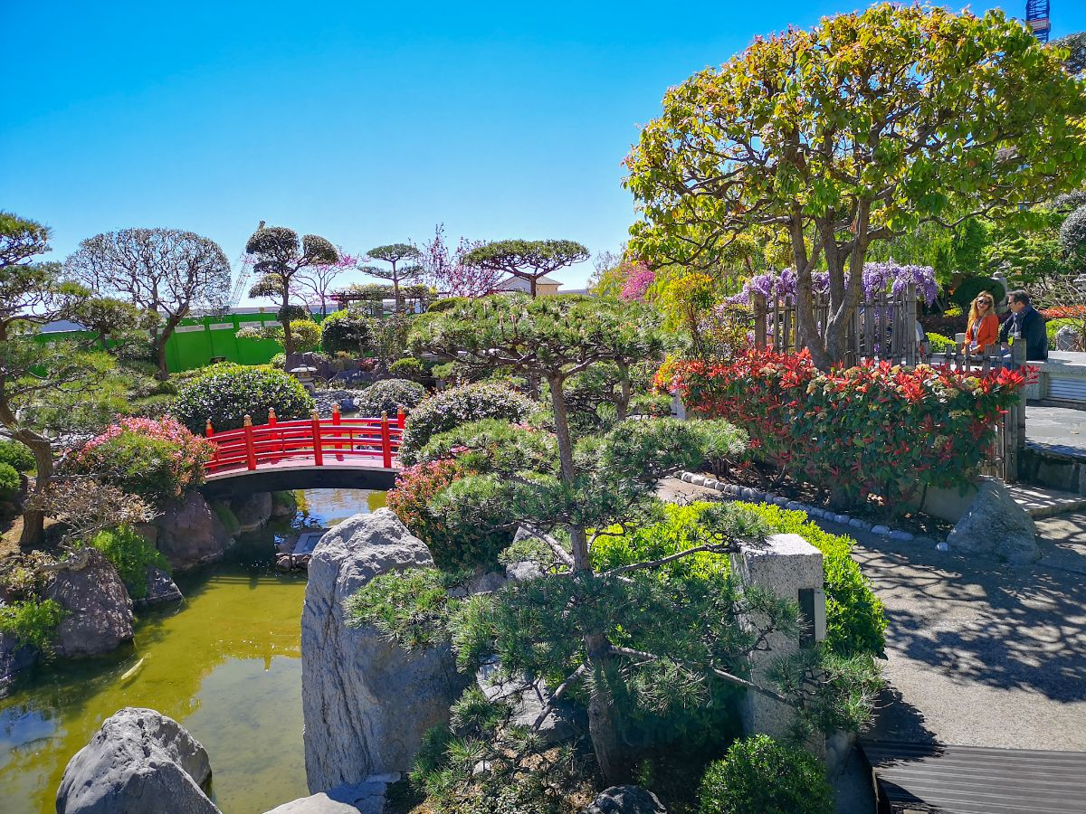 Monako co zwiedzić i zobaczyć w Monako monaco ogród japoński mostek