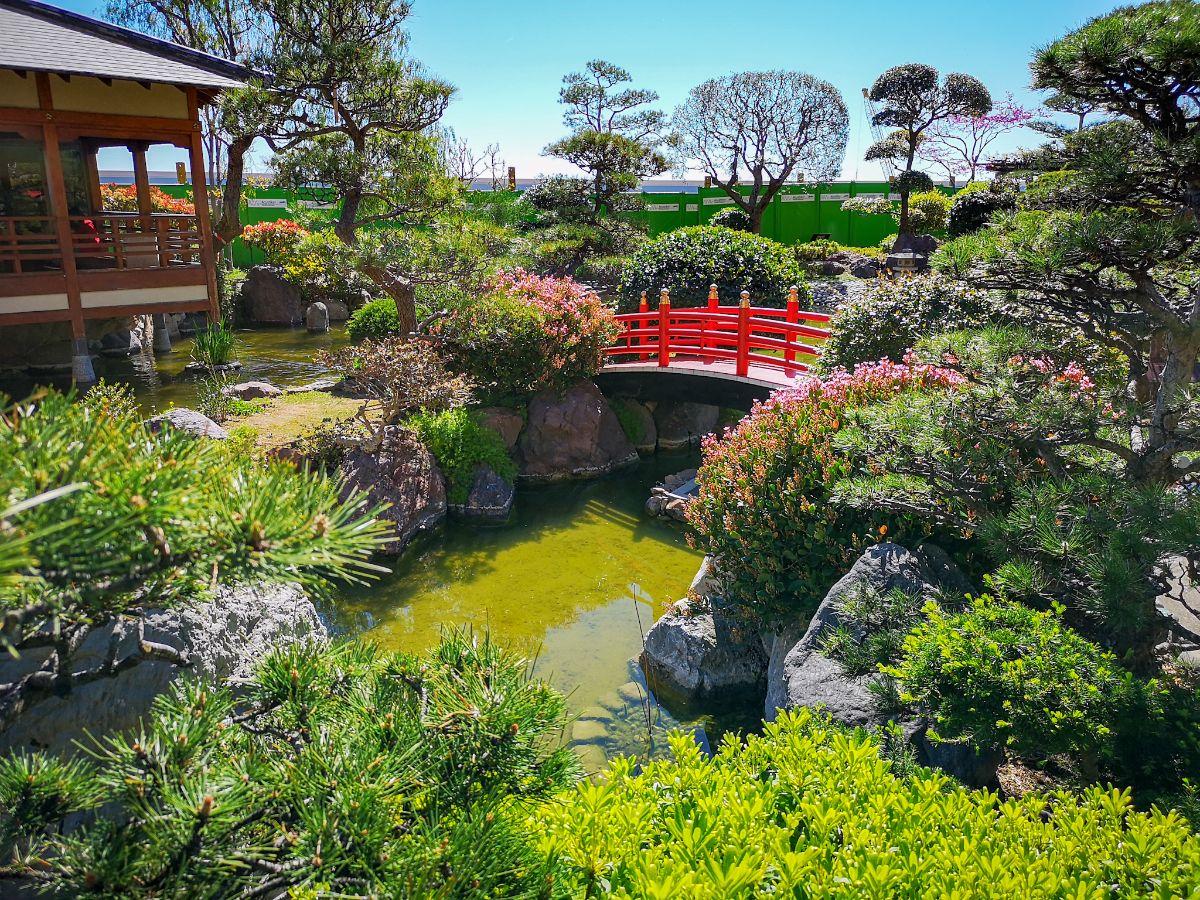 Monako co zwiedzić i zobaczyć w Monako monaco ogrody japońskie japanise gardens