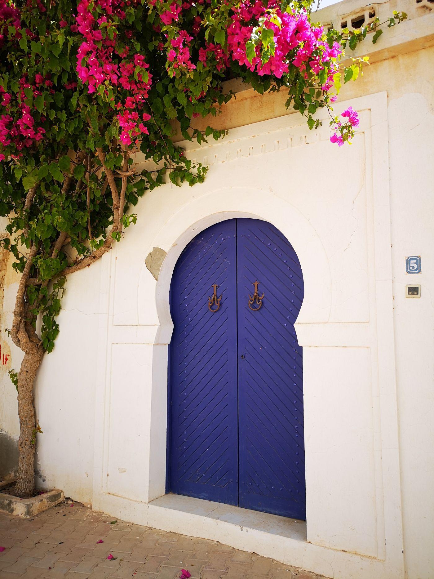 Djerbahood drzwi djerba tunezja kwiaty krzewy