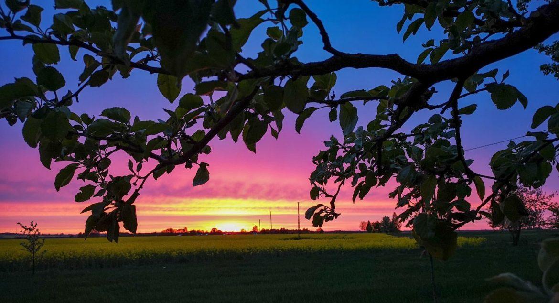 zachód słońca podlasie