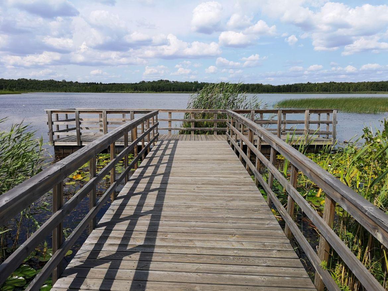 jezioro moszna poleski park narodowy lubelskie na weekend co zobaczyć przyroda pomost mostek