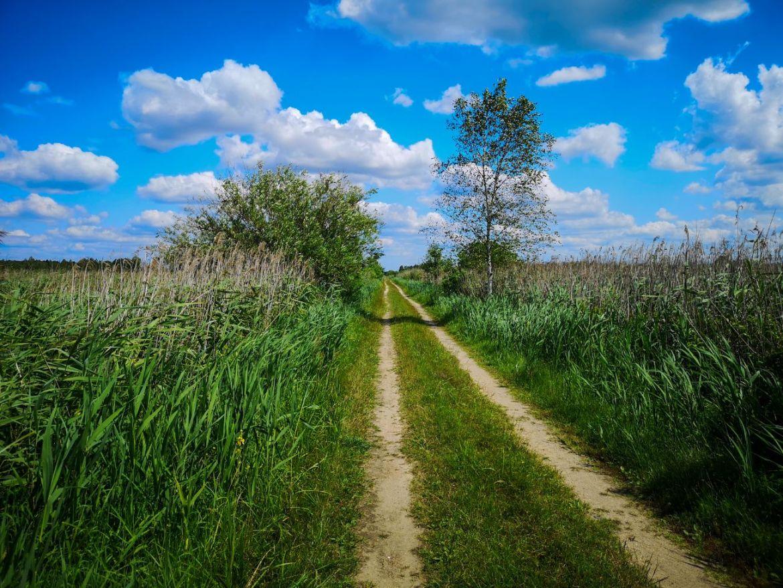 mietiułka ścieżka rowerowa polesie lubelskie na weekend na rower