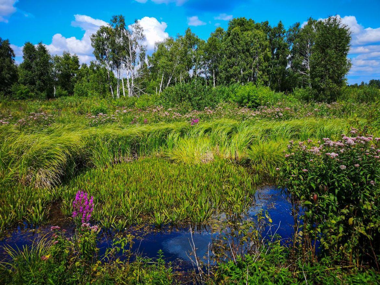 ścieżka rowerowa mietiułka poleski park narodowy na rowerze praktyczne informacje blog weekend w lubelskim aktywnie