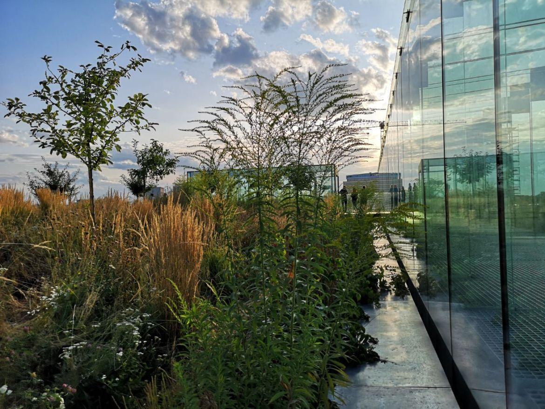 centrum spotknia kultur taras zieleń szklany korytarz weekend w lublinie
