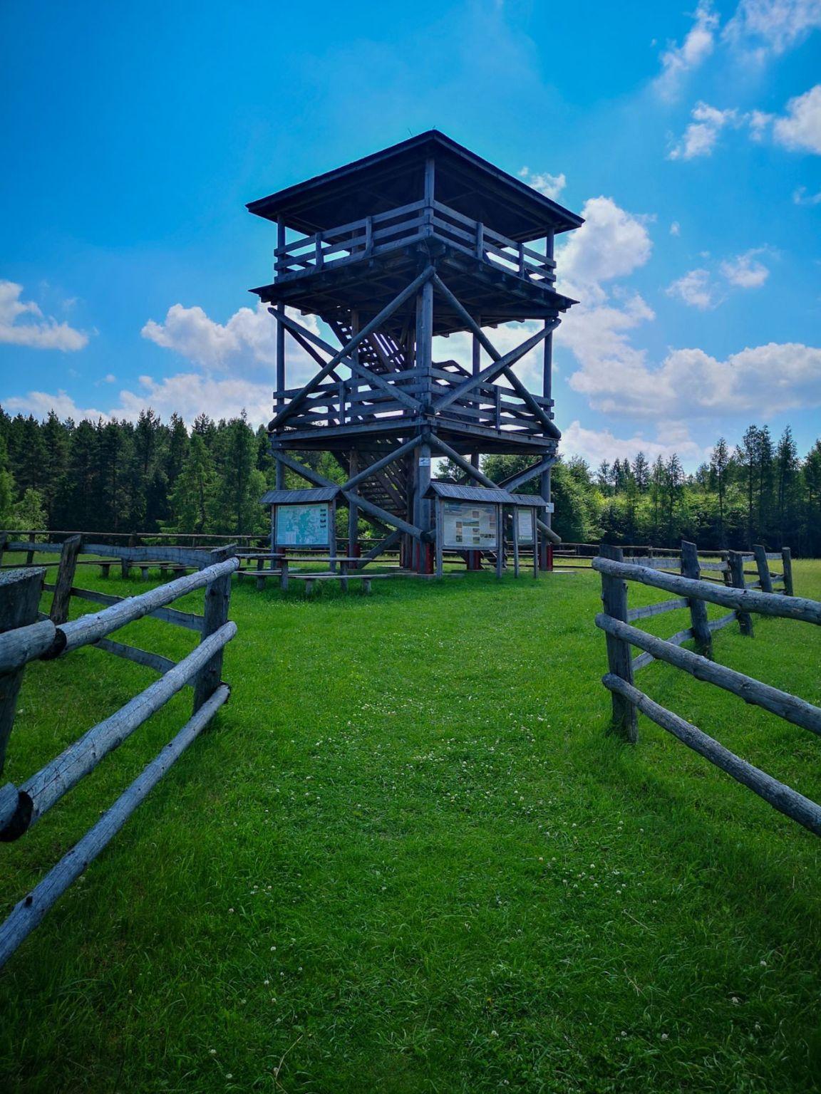 wieża widokowa biała góra roztocze zwierzyniec