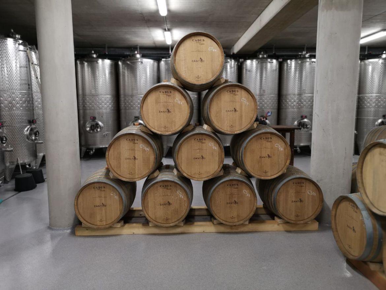 morawy południowe horak winiarnia piwniczkamorawy południowe horak winiarnia piwniczkamorawy południowe horak winiarnia piwniczka