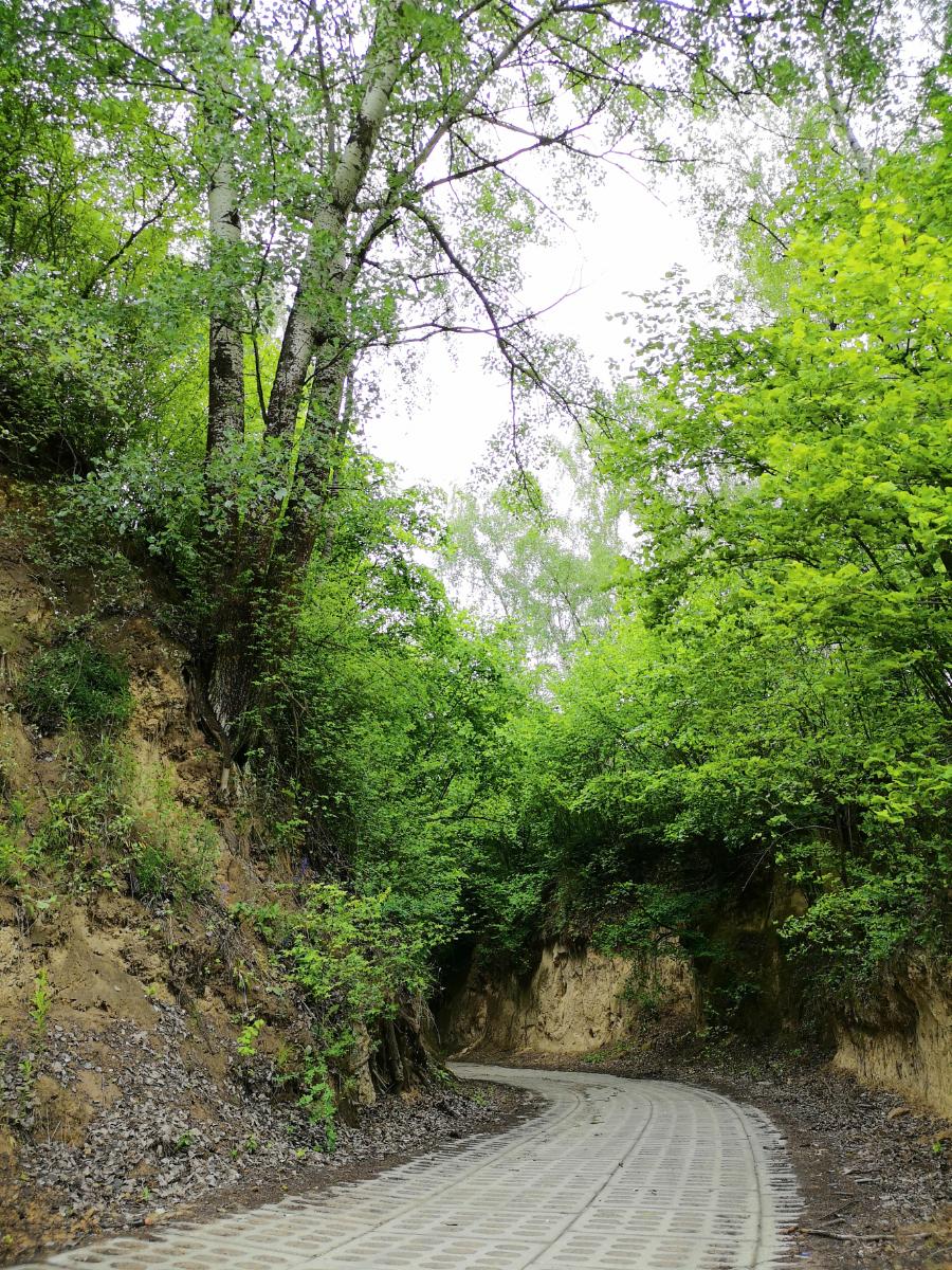 podgórz trasa do grodziska wąwozy lessowe kraina wąwozów lessowych lubelskie
