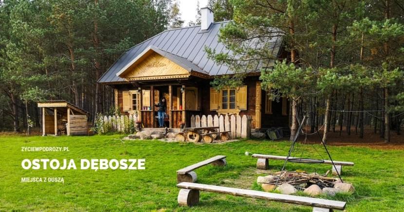 ostaja dębosze puszcza białowieska podlasie noclegi chata blog podróżniczy
