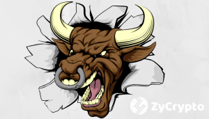 VC Fred Wilson says Bull Run is Coming as Crypto will bottom out somewhere in 2019