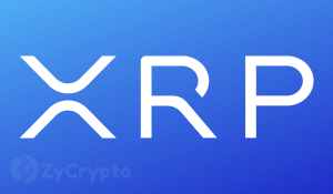 Twitter Poll Suggests Ripple's XRP will see the Highest Gains in 2019