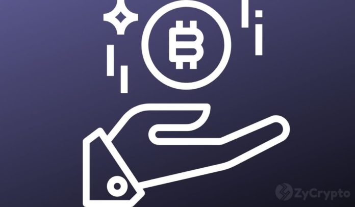 HODLing Pays Off: Buying Bitcoin Has Been Profitable 98.5% Of The Days Since Its Inception