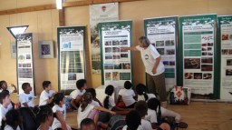 notre exposition photos : les mangroves de Guadeloupe et du monde