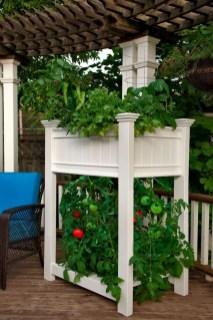 Creative DIY Patio Gardens Ideas On A Budget 20