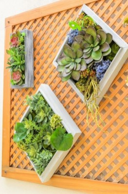 Awesome Succulent Garden Ideas For 2018 10