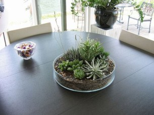 Awesome Succulent Garden Ideas For 2018 15