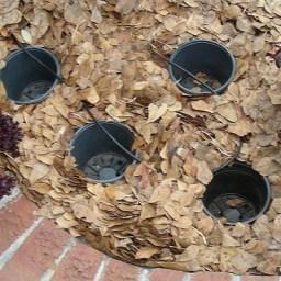 Attractive Sunken Ideas For Backyard Landscape 18