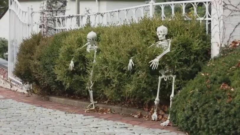 Elegant Diy Halloween Ideas For Outdoor Decoration 15
