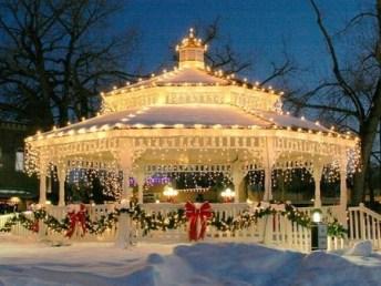 Elegant Christmas Lights Decor For Backyard Ideas 21