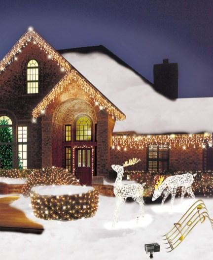 Extraordinary Outdoor Light Christmas Ideas 23