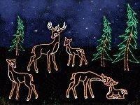 Extraordinary Outdoor Light Christmas Ideas 29