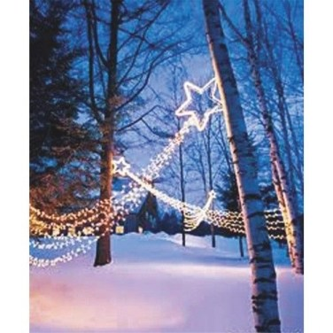 Marvelous Outdoor Lights Ideas For Christmas Decorations 08