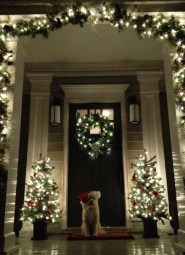 Marvelous Outdoor Lights Ideas For Christmas Decorations 34