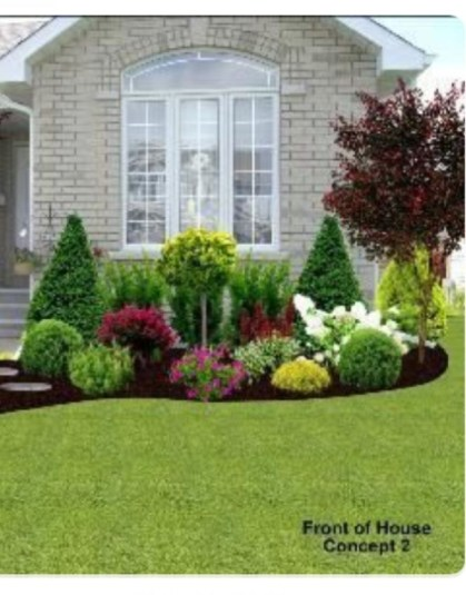 Pretty Colorful Winter Plants And Christmas For Frontyard Decoration Ideas 08