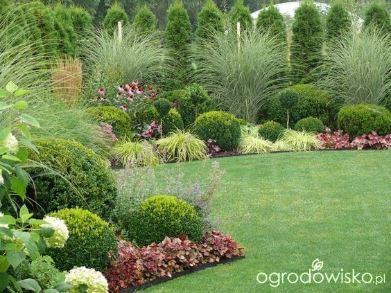 Pretty Colorful Winter Plants And Christmas For Frontyard Decoration Ideas 14