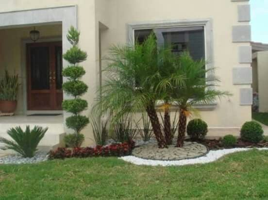 Pretty Colorful Winter Plants And Christmas For Frontyard Decoration Ideas 46