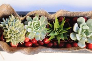 Wonderful Cactus Centerpieces Ideas14