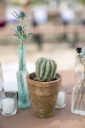 Wonderful Cactus Centerpieces Ideas43