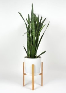 Awesome Stand Wooden Plant Ideas14