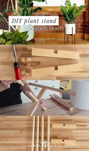 Awesome Stand Wooden Plant Ideas32