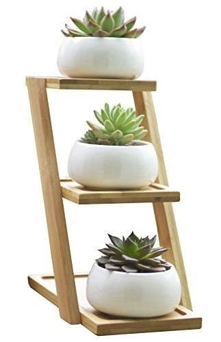 Awesome Stand Wooden Plant Ideas41